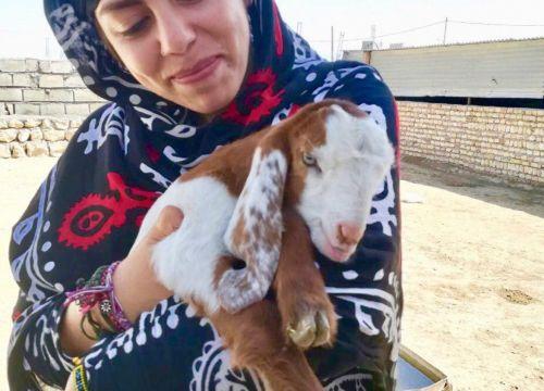 ساخت آبشخور برای آهوهای قراویز با کمک پویش نرگس کلباسی بانوی نیکوکار ایرانی